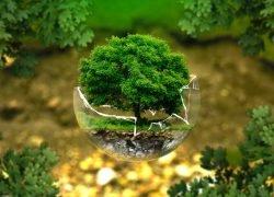 La Giornata Mondiale della Terra: tutto quello che non sapevi di voler sapere