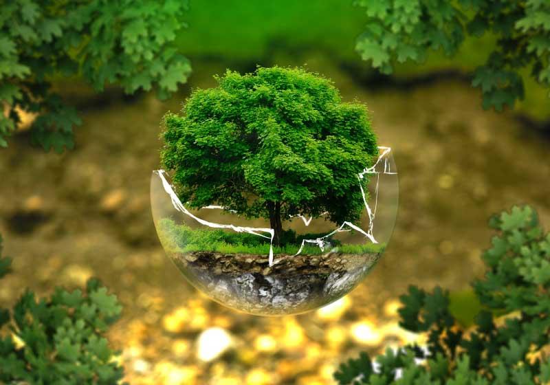 La-Giornata-Mondiale-della-Terra